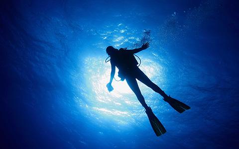 Scubadomain Master Diver