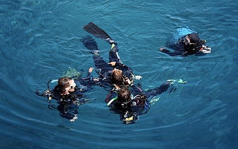 Scubadomain Rescue Diver